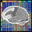 NeuroScienceRu