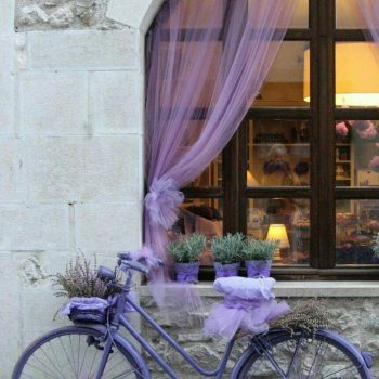 provence_style